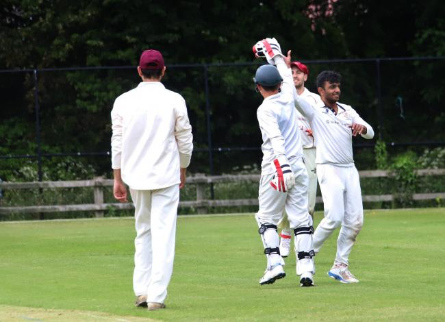 Whitchurch first XI celebrating. Picture by Ian Stading