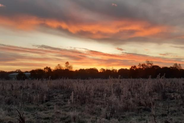 Jane Eaton's stunning sunrise over Prees Heath Common