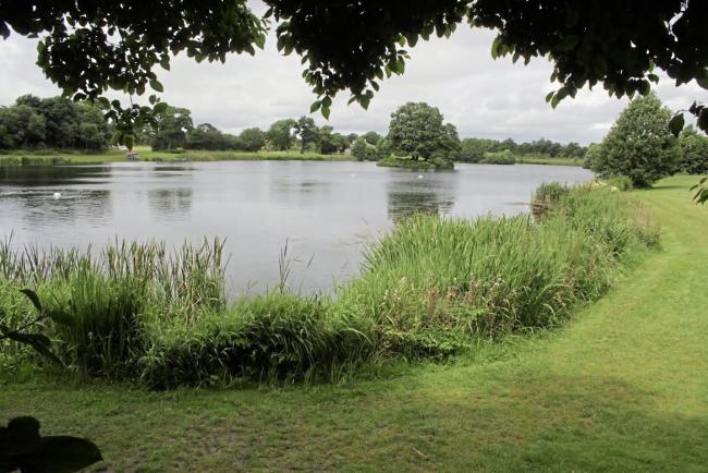 General view  of Dearnford Lake.