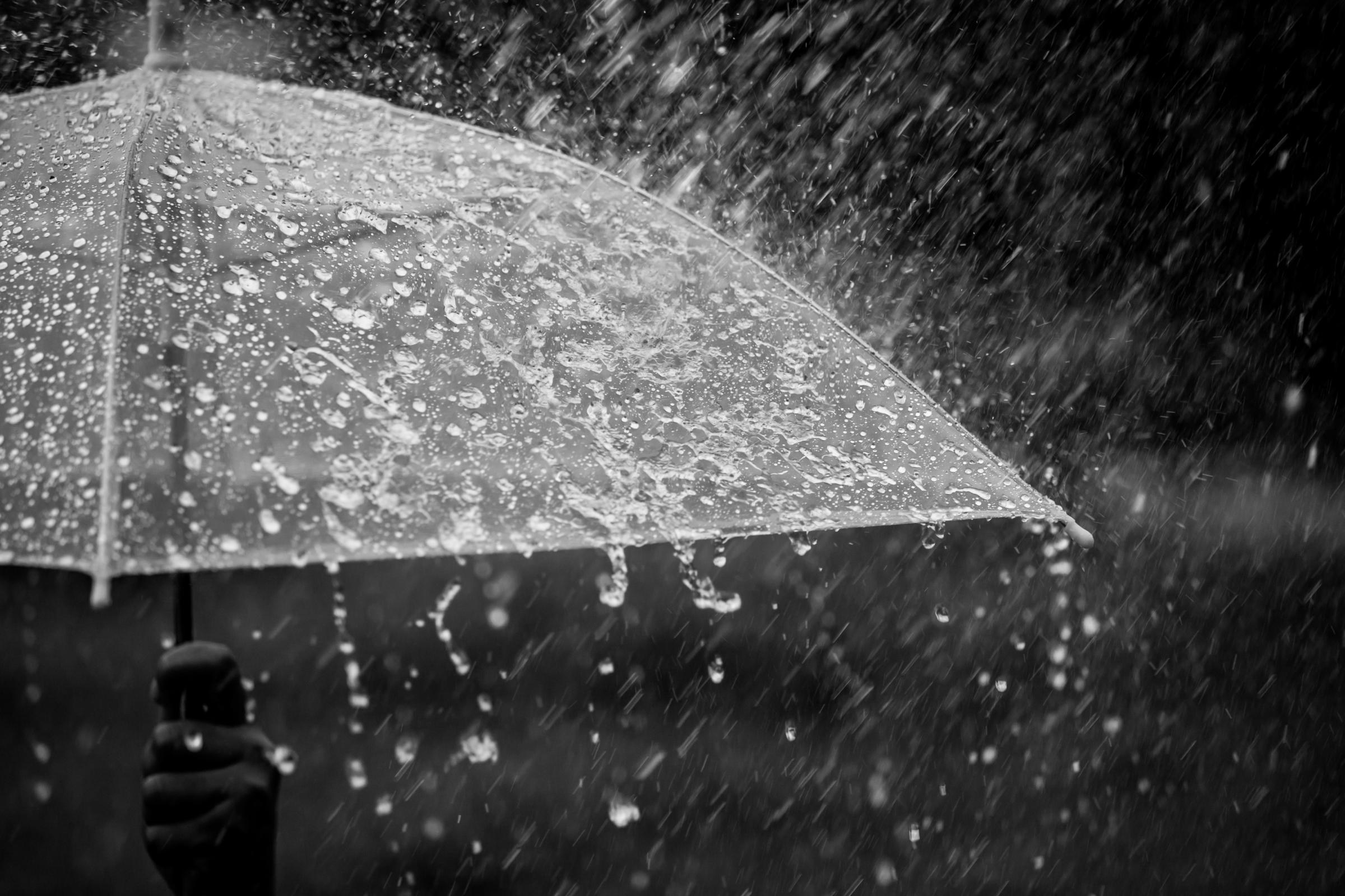 Splashing water on umbrella in the rain in black and white color tone.