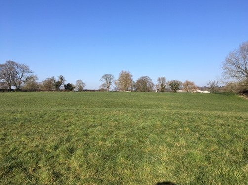 Land at Stag Hall Farm in Bradley, near Whitchurch